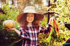 Happy funny child girl in farmer hat and shirt playing and picking autumn vegetable harvest. In sunny garden. Growing organic carrots and pumpkins Stock Photography
