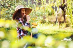 Happy funny child girl in farmer hat and shirt playing and picking autumn vegetable harvest in sunny garden Stock Image
