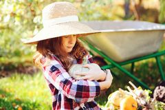 Happy funny child girl in farmer hat and shirt playing and picking autumn vegetable harvest in sunny garden. Growing organic carrots and pumpkins Stock Image