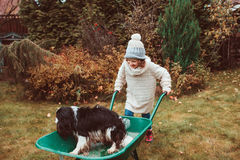Happy funny child girl riding her dog in wheelbarrow in autumn garden, candid outdoor capture Stock Photo