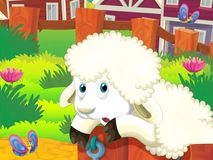 The happy - funny illustration with running sheep - drawing for children Stock Images
