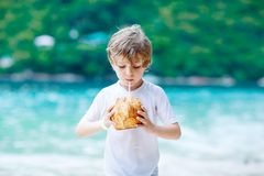Happy funny little preschool kid boy drinking coconut juice on ocean beach. child playing on family vacations on royalty free stock images