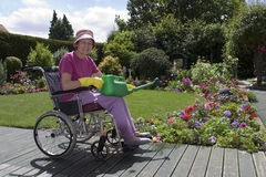 Happy Gardener. View of a disabled female watering the garden while sitting in a wheelchair Stock Photos