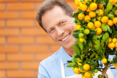 Happy gardener. Stock Image