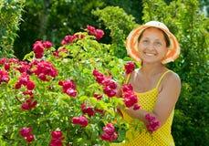 Happy  gardener in roses plant. Happy female gardener in roses plant at garden Royalty Free Stock Photos