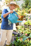 Happy gardener spraying water on plants at garden royalty free stock photography