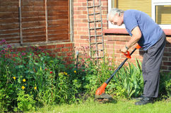 A happy gardener strimming the lawn. royalty free stock photo