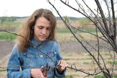 Happy gardener woman using pruning scissors in orchard garden. Pretty female worker portrait Royalty Free Stock Images