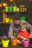 Happy gardeners with spring flowers. bearded man and little boy child love nature. Father and son. Fathers day. Flower stock images