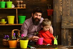 Happy gardeners with spring flowers. Family day. Greenhouse. Flower care watering. Soil fertilizers. Father and son. Bearded men and little boy child love royalty free stock photos