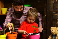 Happy gardeners with spring flowers. man and little boy child love nature. Father and son. Fathers day. Flower care. Happy gardeners with spring flowers. men and royalty free stock image