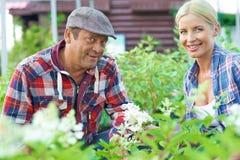 Happy gardeners Stock Photo