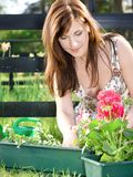 Happy gardening Stock Image