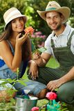 Happy gardening couple. Smiling at camera, smelling rose, smiling Royalty Free Stock Image