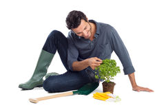 Happy Gardner Takes Care Of The Plant Stock Images