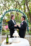 Happy Gay Couple Gets Married Stock Images