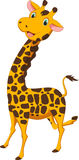 Happy giraffe cartoon Stock Image