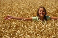 The happy girl. The happy free young girl on a belt in gold ears on a field Royalty Free Stock Image