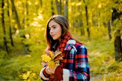 Happy girl on autumn walk. Portrait of beautiful caucasian woman walking outdoors. Autumn woman in autumn park with red. Pullover stock photo