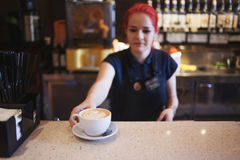 Happy girl Barista gives coffee  to the customers Stock Photos