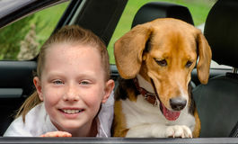 Happy girl and beagle in a car Stock Image