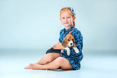 The happy girl and a beagle puppie on gray background. The happy girl and beagle puppie on gray background Royalty Free Stock Photos
