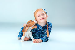 The happy girl and a beagle puppie on gray background. The happy girl and beagle puppie on gray background Stock Image