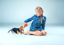 The happy girl and a beagle puppie on gray background. The happy girl and beagle puppie on gray background Royalty Free Stock Photography