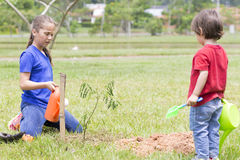 Happy Girl and Boy Watering Plants Outdoors Stock Image