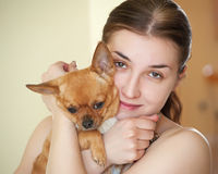 Happy girl with chihuahua dog in arms. Royalty Free Stock Images