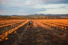 Happy girl in dark blue coat running on the pumpkin field royalty free stock photos