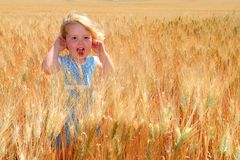 Happy Girl in Durum Wheat. A happy little girl standing in a durum wheat field Stock Photos