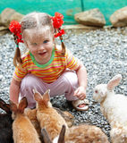 Happy girl feed group rabbit. Royalty Free Stock Images