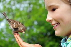 Happy girl feeding sparrow Stock Image