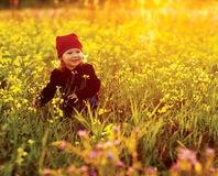 Happy  girl with field flowers Stock Photos