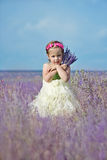 Happy girl in field Royalty Free Stock Images