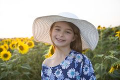 Happy girl on a field of sunflowers on summer sunset stock photo
