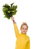 Happy girl with green maple leaf in his hand Stock Photos