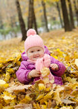 Happy girl in the leaves. Happy little girl sitting in the yellow leaves in the forest royalty free stock photo