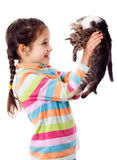 Happy girl lifted up two kitten Royalty Free Stock Images