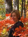 Happy girl among maple leaves. Happy smiling woman among maple leaves in the fall forest Stock Photography