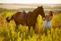 Happy girl near to a horse. In the grass field Stock Images