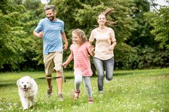 Girl with parents walking the dog stock photo