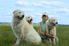 Happy girl playing with her pets dogs. Stock Photo