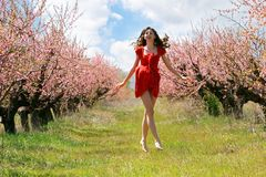 Happy girl in red dress Stock Images