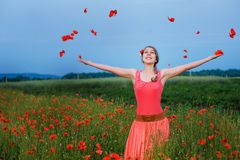 Happy girl in a red dress on poppy field Stock Images