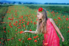 Happy girl in a red dress on poppy field Stock Photo
