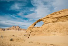 The happy girl on the rock and group of camels are in incredible beautiful landscape in desert. The happy girl on the rock and group of camels are in incredible stock photography