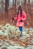 Happy girl with Samoyed dog in winter forest Stock Photo