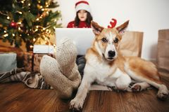 Happy girl in santa hat shopping online on laptop and sitting wi stock photo